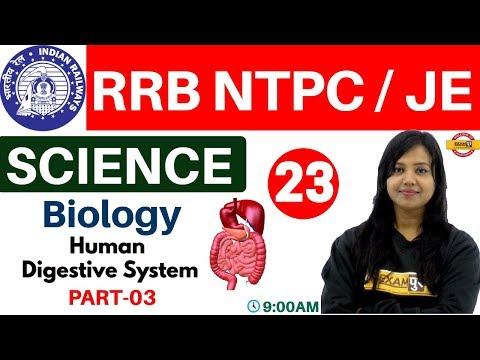 Class- 23||RRB NTPC/JE /UPSSSC /SSC || Science || Biology| By Amrita Ma'am || Human Digestive System