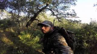 Laguna Mountain: 1 Day Hog Hunt