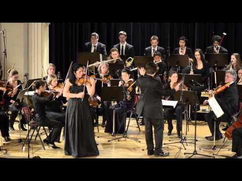 Prokofiev Violin Concerto No 2 Karin Adam I Allegro moderato