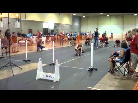 Dancer's First NAFA Race 7 12 14