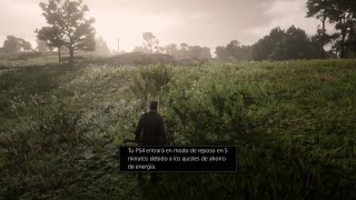 RED DEAD REDEMPTION 2 fiebre de armas