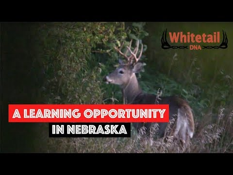 WhitetailDNA 2016 #2: A Learning Opportunity in Nebraska
