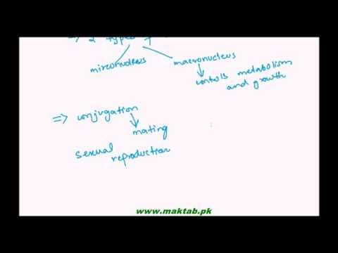 FSc Biology Book1, CH 07, LEC 3:...