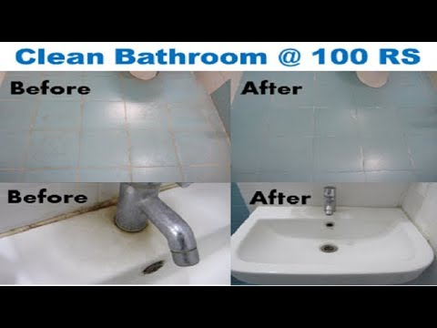 Toilet Vs Kitchen Sink Experiment
