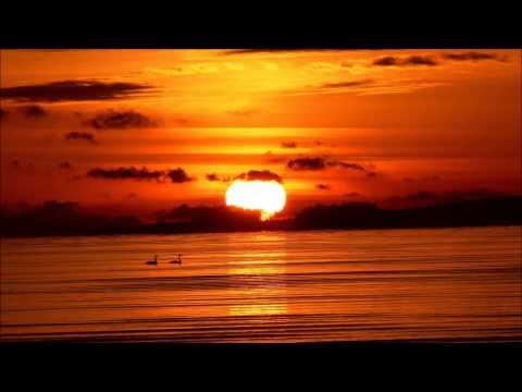 Sax on the beach - DJ Valdi ft. Ethernity (Bass boosted)
