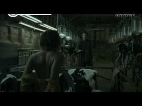 I figli degli uomini (2006): il distopico di Cuaròn 2