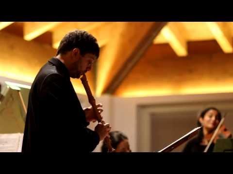Telemann - Triosonata in D minor for recorder, violin and b.c. - Ensemble Estro Cromatico