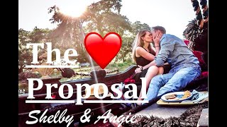 The Proposal - We're Engaged! - Complete Surprise!