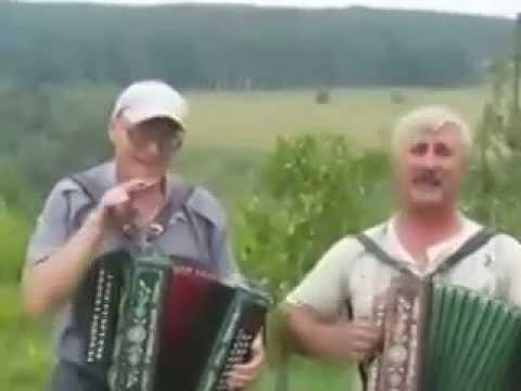 Песня под гармонь   Кобели мы , кобели весело получилось
