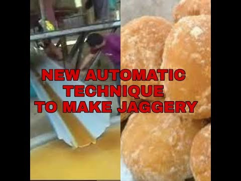 automatic  GULA MERAH / jaggery plant video