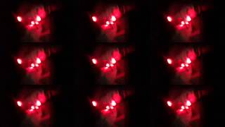 """Barbra Streisand (Dubstep Remix)"" gloving light show"