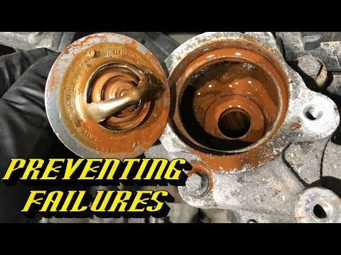 Never Follow Ford's Lifetime Fluid Service Intervals: Heres What I Recommend and Why!