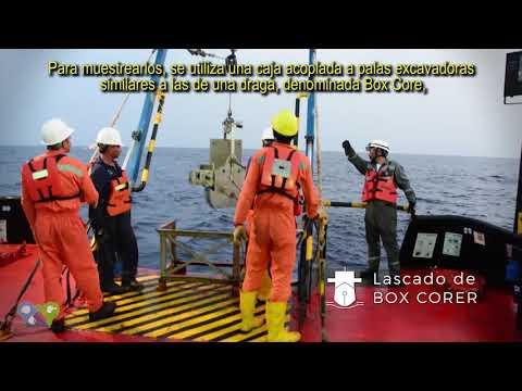 Offshore Sampling