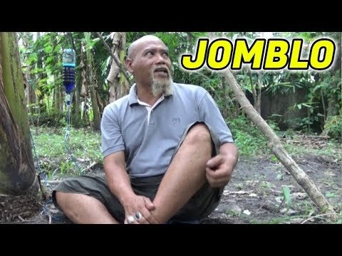 Pak Ndul - JOMBLO
