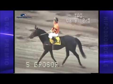 Gran Premio Hipodromo Chile 1987 -  Grosor
