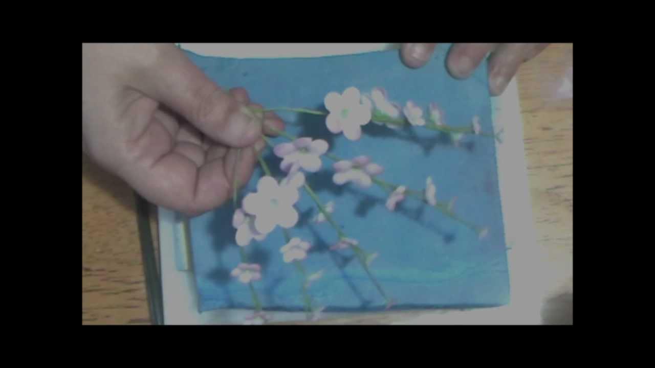 Sugar Paste Cake Decorating 13 Blossom Filler Flowers Ozzie Cake Decorating Youtube