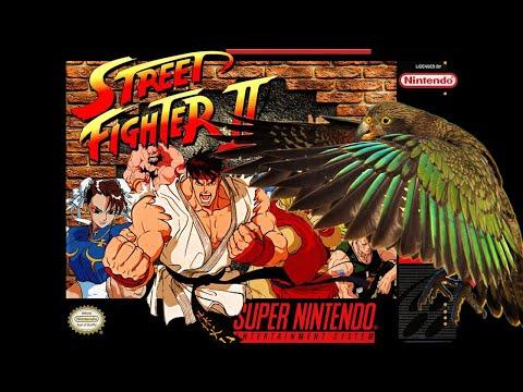 Kia Street Fight