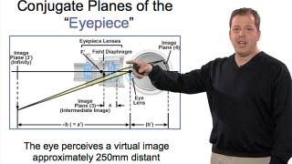 Microscopy: Eyepieces (Stephen Ross)