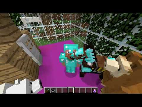 how to tame a parrot in minecraft  (no mods)