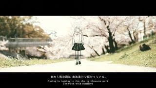 Sakura Shooting Star / HAG