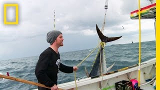 Bluefin Adrenaline | Wicked Tuna: Outer Banks