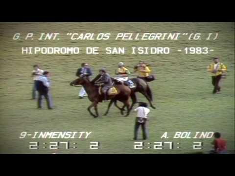 1983 GP CARLOS PELLEGRINI  INMENSITY - A BOLINO