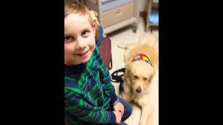 Autism Service Dog At Doctor