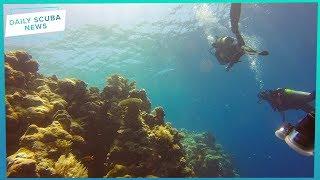 To All RAID Scuba Divers | Daily Scuba News (w/ Shaun)