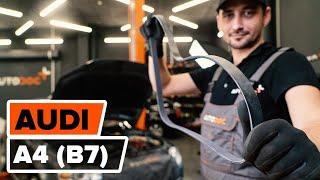 Instalace Klinovy zebrovany remen AUDI A4: video příručky