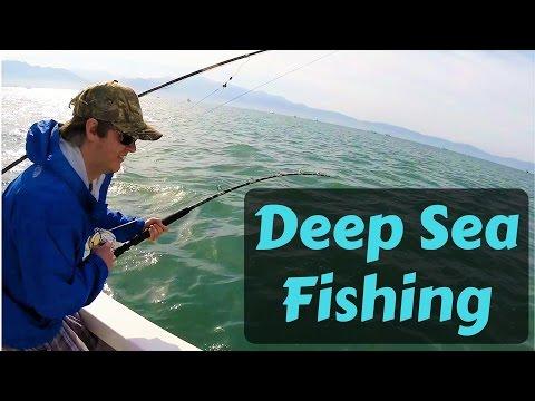 Deep Sea Fishing, Puerto Vallarta, Mexico