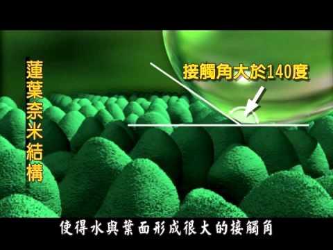 【出淤泥而不染的蓮花】國立科學工藝博物館-奈米科技影片
