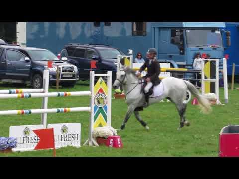 Derg Showtime ID stallion (David Moran) 130cm Grand Prix
