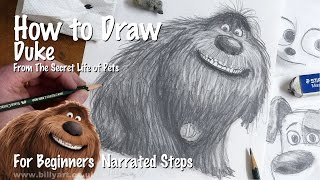 How to Draw Duke from The Secret Life of Pets for beginners