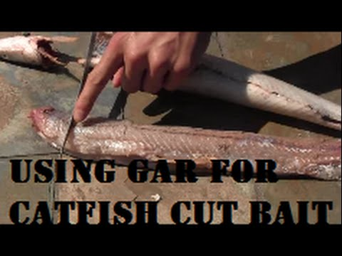 Suspend Drifting for Blue Catfish with Steve Douglas (Wild Catters TV) from YouTube · High Definition · Duration:  11 minutes  · 28,000+ views · uploaded on 5/15/2016 · uploaded by Chatt Cats Fishing