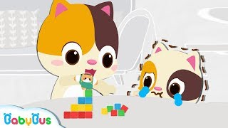 Kitten Timi, Which Color Do You Want   Number Song, Learn Colors   Educational Song for Kids BabyBus