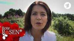 Patricia Schäfer im Videoportrait | Rote Rosen