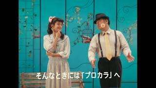 ヘアカラー専門店プロカラのCMです 山形店 鶴岡店 酒田店.