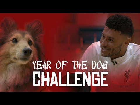 Chinese New Year | Liverpool stars take on 'Year of the Dog' challenge