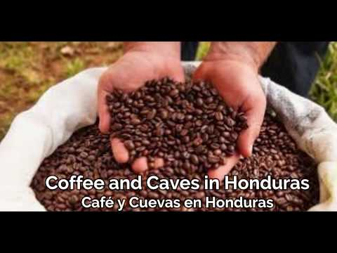 Coffee and Caves in Honduras 2007