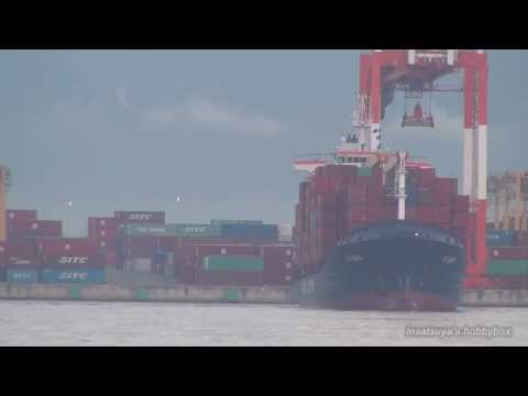 JJ SUN コンテナ船 大阪港 container ship JINJIANG SHIPPING
