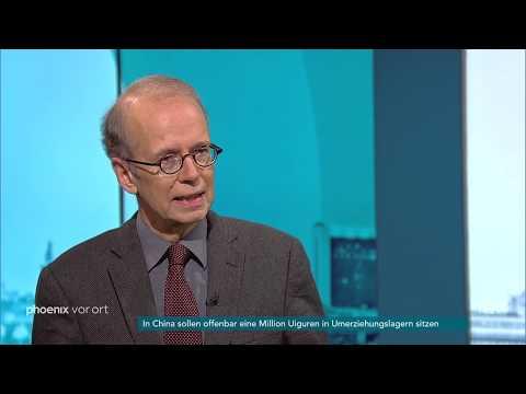 Prof. Tilman Mayer zur Affäre um AfD-Spende am 12.11.18