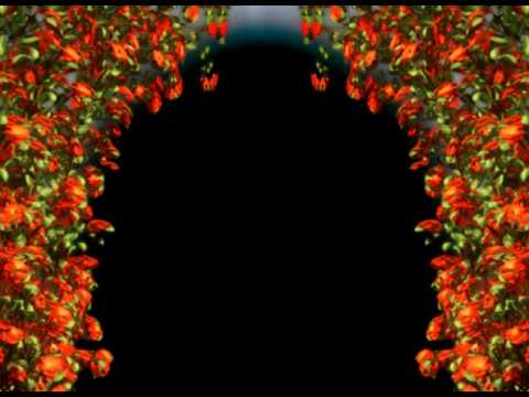 Free Download Wedding Background Hd Free Motion Background Hd Free