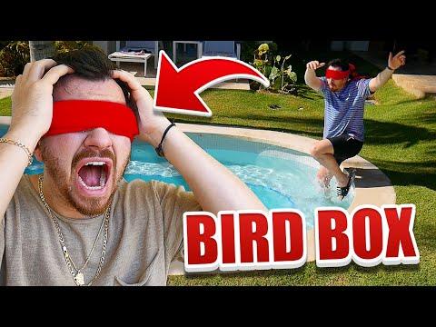 24 Hour Bird Box Challenge!! (BLINDFOLDED) Mp3