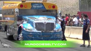 ALMA LIBRE DRAG RACING TRUCKS PUERTO RICO  SCHOOL BUS