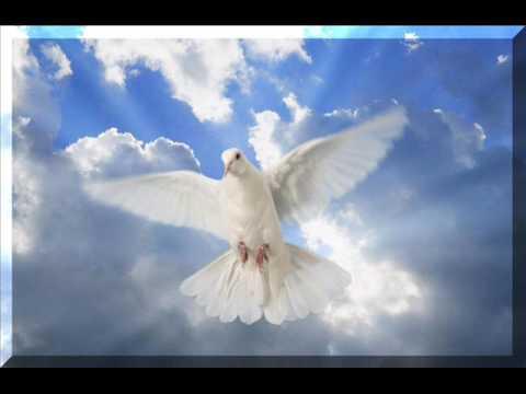 manda-teus-anjos-anjo-de-resgate