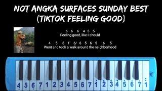 Download Not Angka Sunday Best | Feeling Good Like I Should (Tiktok Viral)
