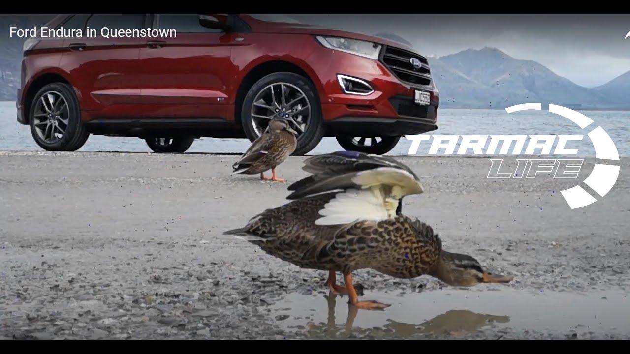 Ford Endura In Queenstown