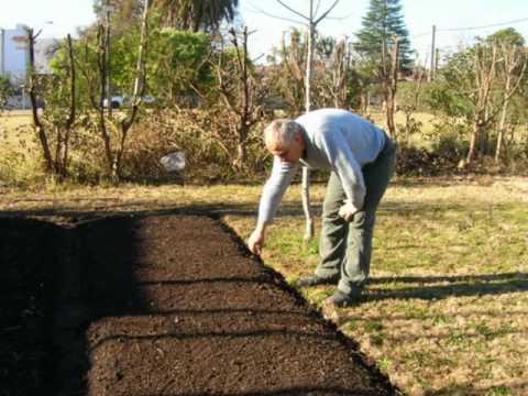 Huerta org nica todo el proceso youtube for Plantas para huerta organica