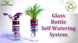 How to Make Glass Bottle Self Watering System | Reuse Glass Bottle Garden Ideas //GREEN PLANTS