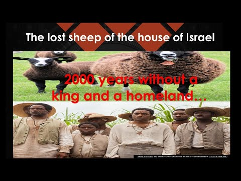 Israel is to dwell  a long time-(2000 years) without a king, a homeland.....